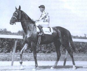 Crown Perth Winner -41685