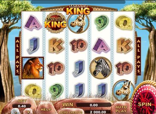 Western Slot Monkey -78471