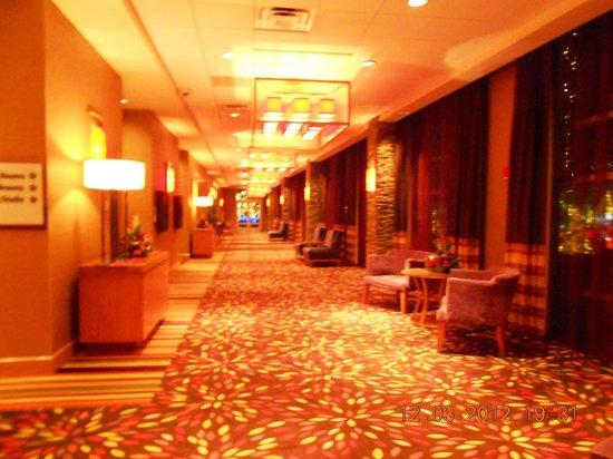 Casino Front Money -43972