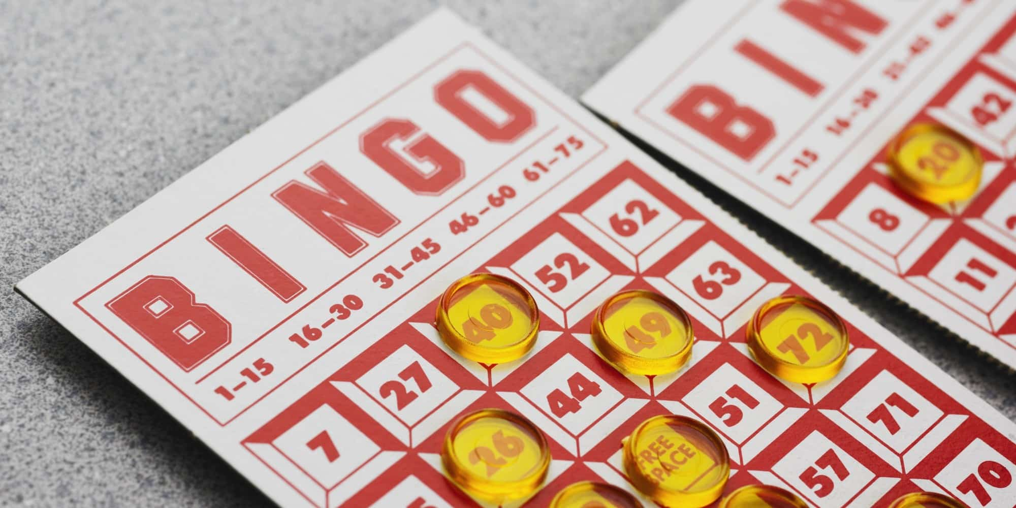 Bingo for Real -24951