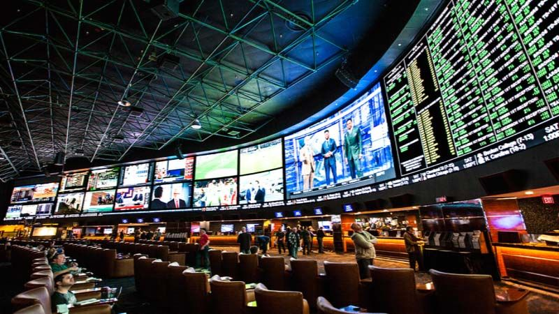 MMA Betting -33775