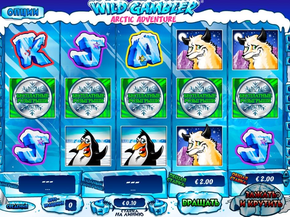Wild Gambler Arctic -58682