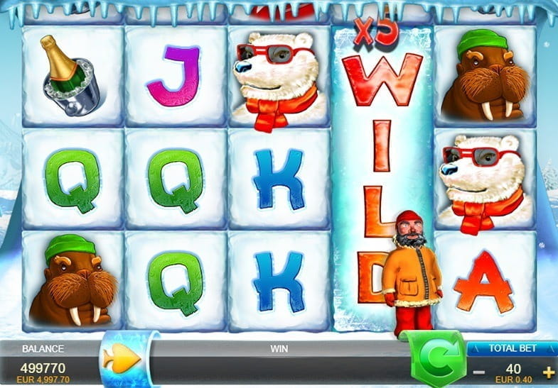 Wild Gambler Arctic -21470