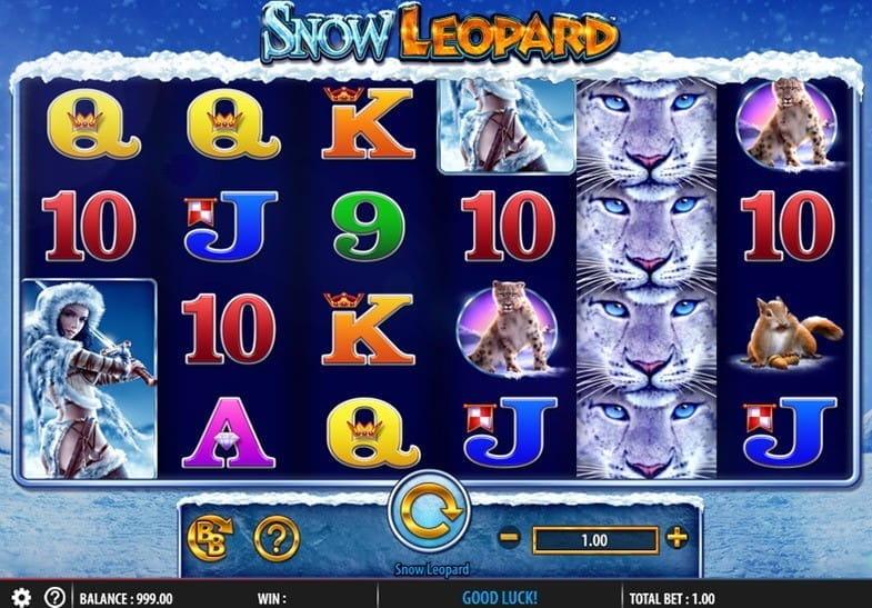 Wild Gambler Arctic -20437